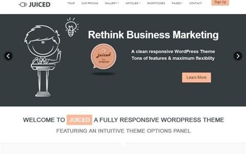juiced responsive wordpress theme
