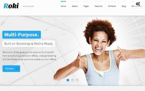 roki – multi purpose responsive theme