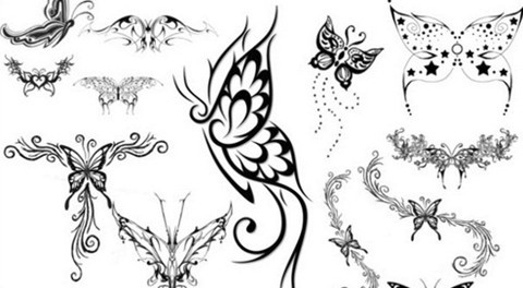 butterfly brushes set1