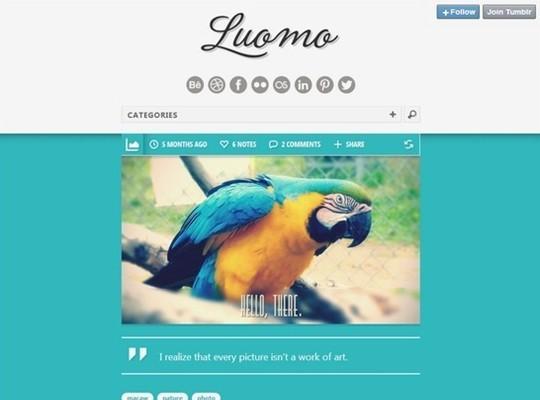 luomo – a responsive & expressive tumblr theme