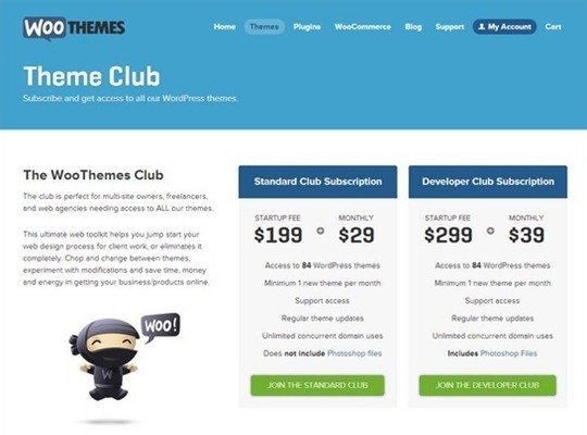 woo themes - pricing page design