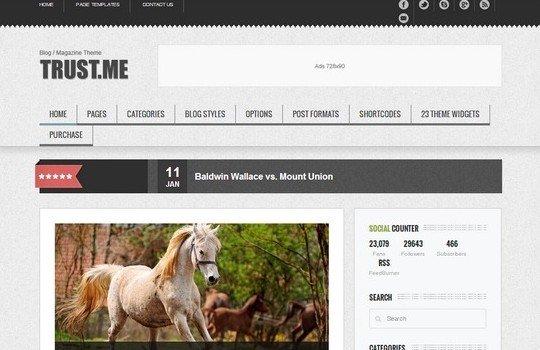 TrustMe – Responsive WordPress Magazine / Blog