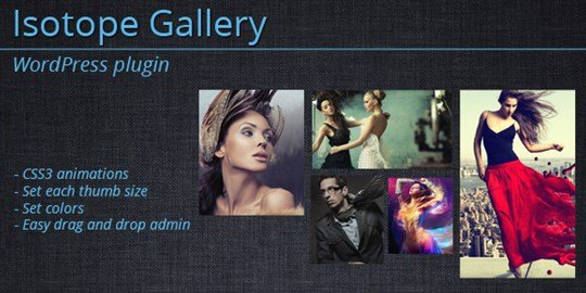 isotope gallery - wordpress plugin