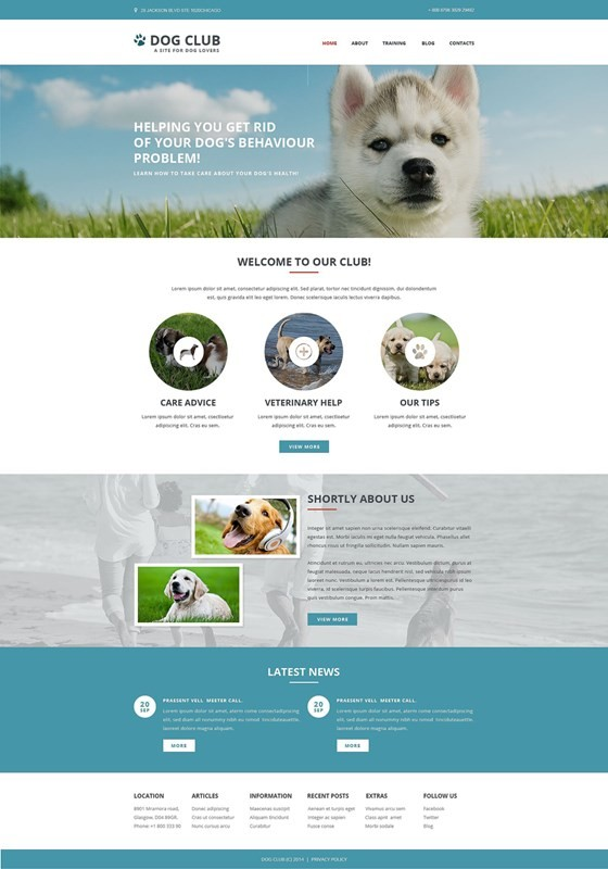 Dog Club Responsive Website Template