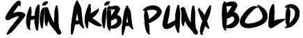 Shin Akiba punx Bold Font