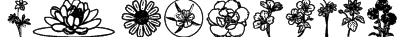 Wildflower III Font