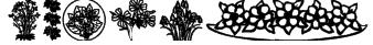 Wildflower II Font