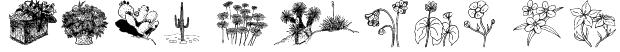 wmflowers2 Font