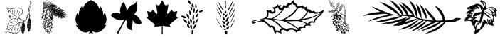 wmleaves1 Font