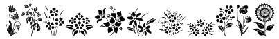 WWSpringTime Font