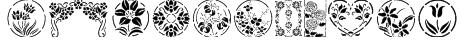 Floral Stencil Design Font