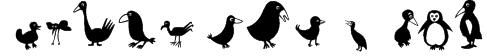 Birds Font