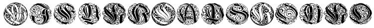 WieynkCapsRound Font