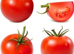 Juicy Red Tomato Vector Set