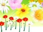 Spring Flower Bouquet Vector Illustration