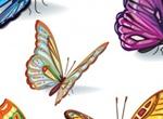 2 Beautiful Butterflies Vector Templates