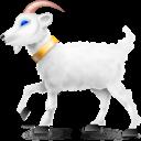 Animal, Frank, Goat Icon