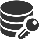 Data, Encryption Icon