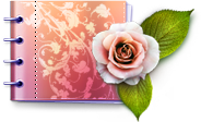 Catalog, Lovely Icon