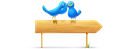 And, Birds, Sign Icon