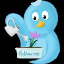 Flower, Follow, Me, Spring Icon