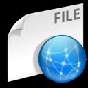 File, Internet, Network Icon