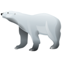 Bear, Polar Icon