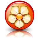 Detail, High, Magnolia Icon
