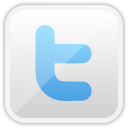 Networking, Social, Twitter Icon