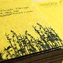 4000 Flores