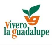 LA GUADALUPE Nursery
