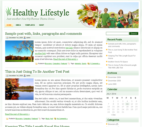 ads ready,food,footer columns,health,lifestyle wordpress theme