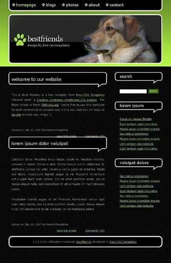 animals,dog,pet website template